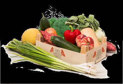 Fruit-Veg-Box-2_LowRes