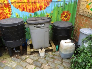 And a few wormeries on the go also making compost. Check out all that worm juice (in the white container) which will be dilute to 10 parts of water as a rich organic fertiliser!